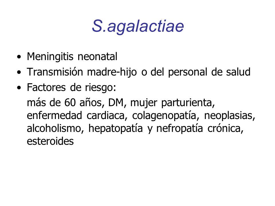 S.agalactiae Meningitis neonatal