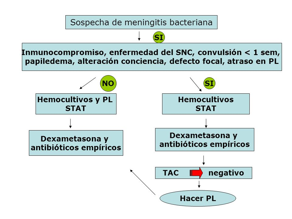 Sospecha de meningitis bacteriana