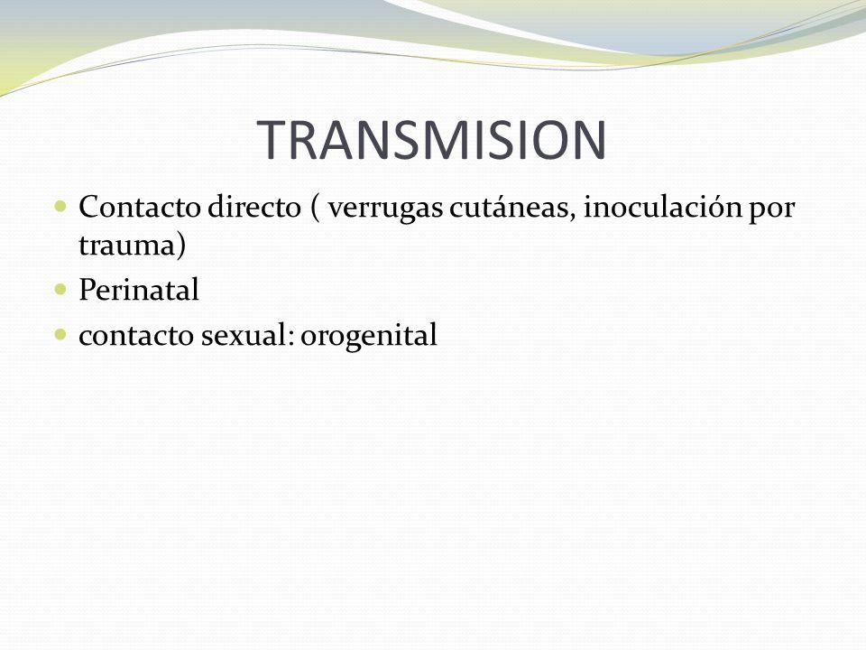 TRANSMISION Contacto directo ( verrugas cutáneas, inoculación por trauma) Perinatal.