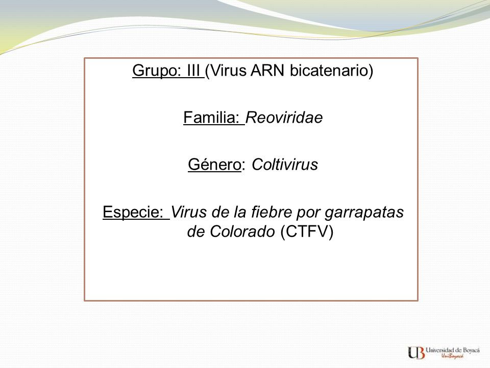 Grupo: III (Virus ARN bicatenario) Familia: Reoviridae Género: Coltivirus Especie: Virus de la fiebre por garrapatas de Colorado (CTFV)