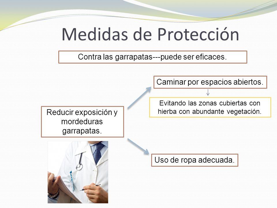 Medidas de Protección Contra las garrapatas---puede ser eficaces.