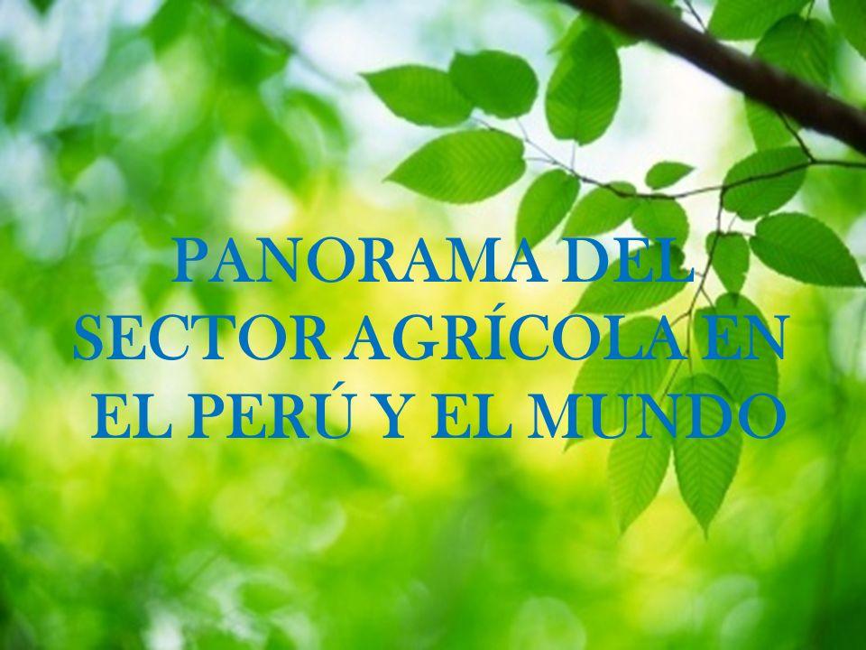 PANORAMA DEL SECTOR AGRÍCOLA EN EL PERÚ Y EL MUNDO