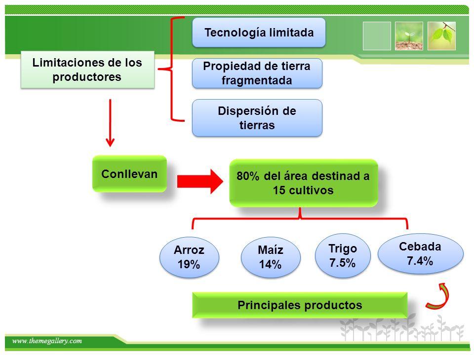 Limitaciones de los productores Propiedad de tierra fragmentada