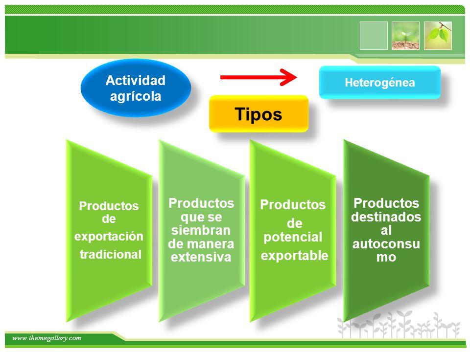 Tipos Productos Productos que se siembran de manera extensiva