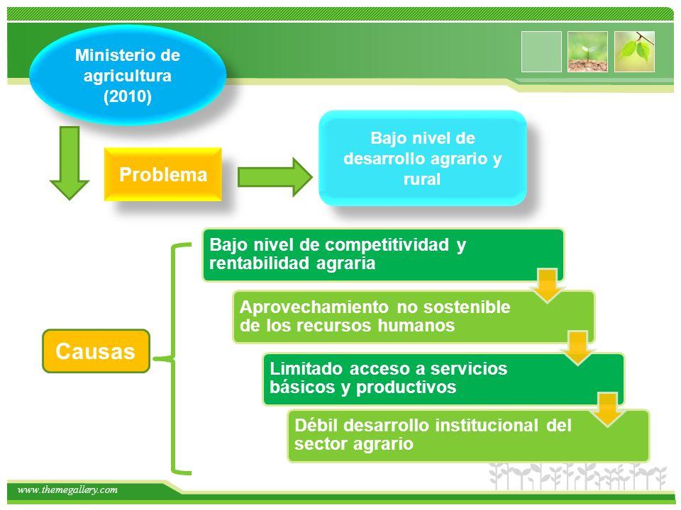 Causas Problema Ministerio de agricultura (2010)