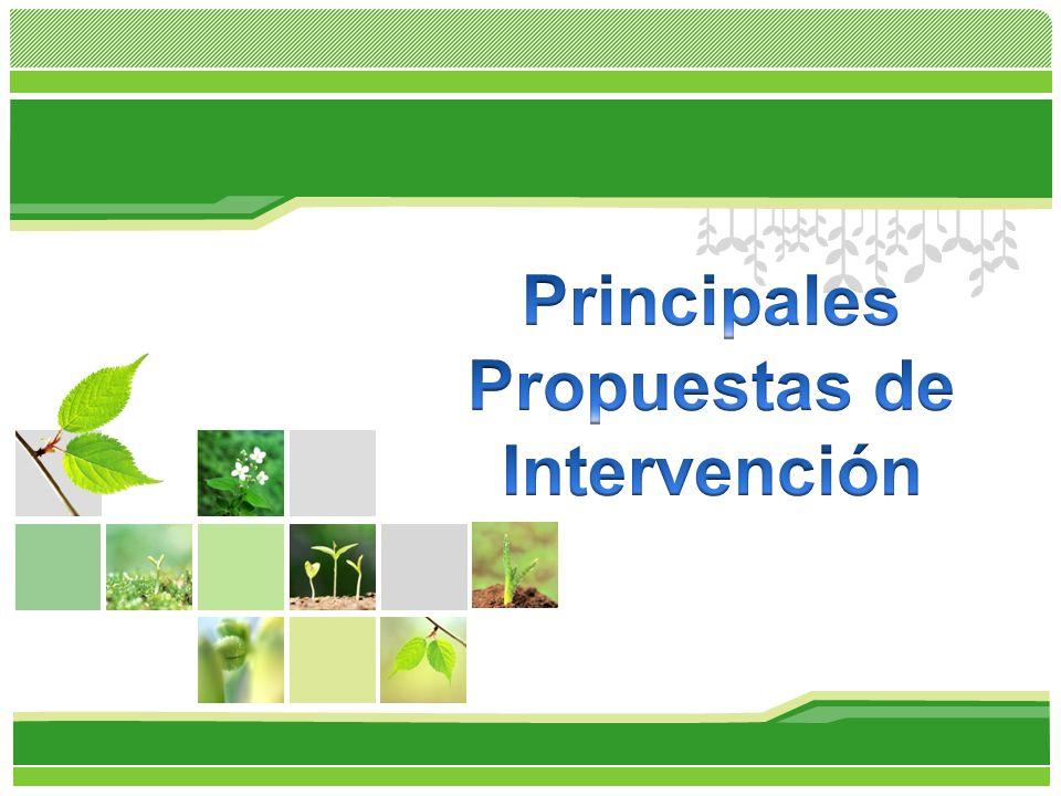 Principales Propuestas de Intervención