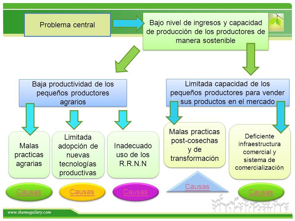 Baja productividad de los pequeños productores agrarios