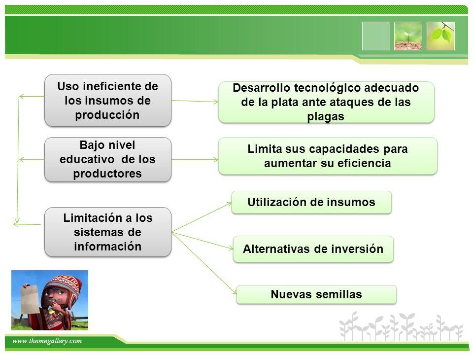 Uso ineficiente de los insumos de producción