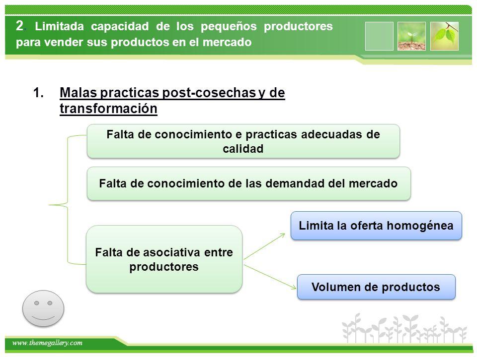 Malas practicas post-cosechas y de transformación