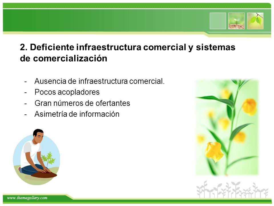 2. Deficiente infraestructura comercial y sistemas de comercialización