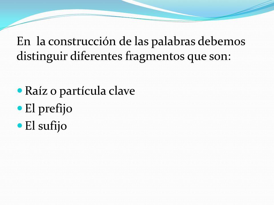 En la construcción de las palabras debemos distinguir diferentes fragmentos que son: