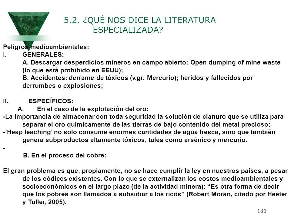 5.2. ¿QUÉ NOS DICE LA LITERATURA ESPECIALIZADA