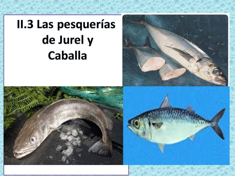 II.3 Las pesquerías de Jurel y Caballa