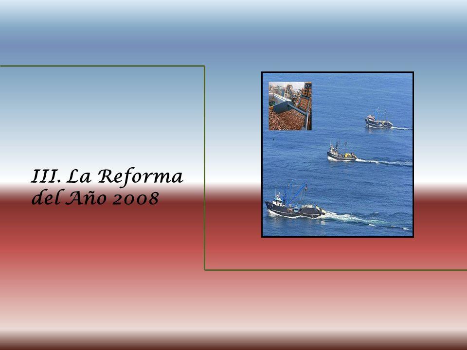 III. La Reforma del Año 2008