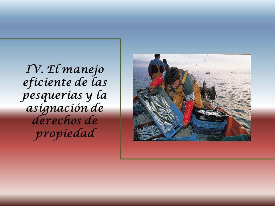 IV. El manejo eficiente de las pesquerías y la asignación de derechos de propiedad