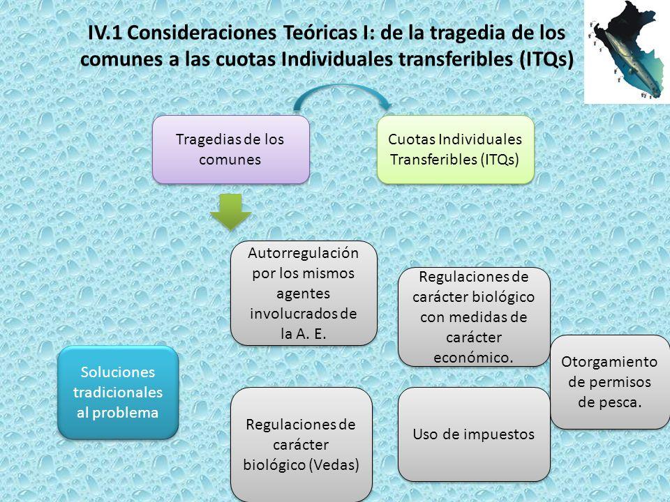 IV.1 Consideraciones Teóricas I: de la tragedia de los
