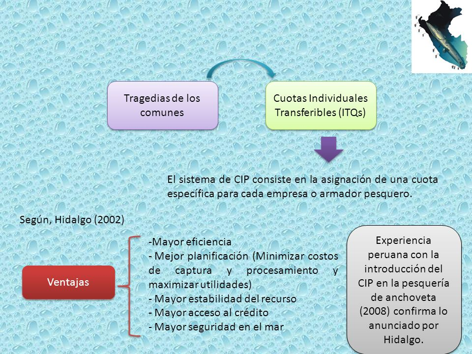 Tragedias de los comunes Cuotas Individuales Transferibles (ITQs)