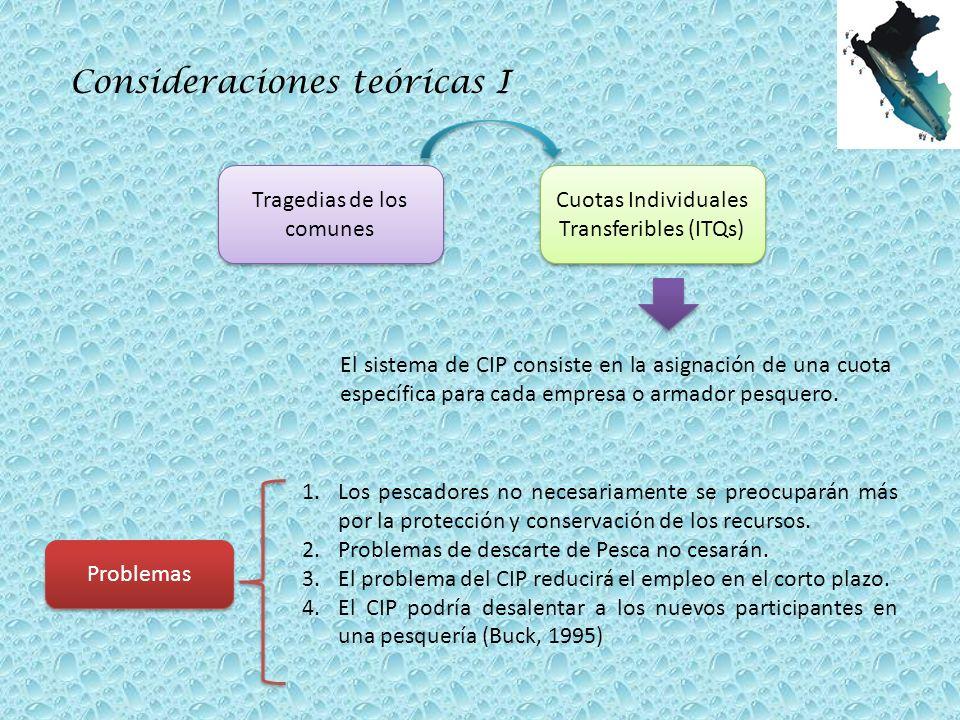 Consideraciones teóricas I