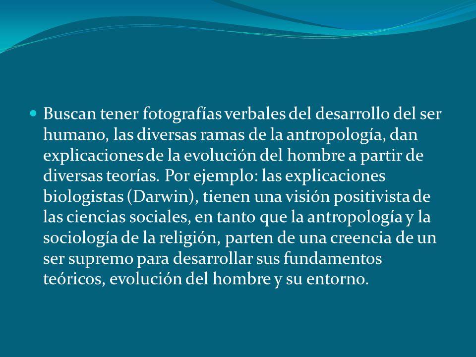 Buscan tener fotografías verbales del desarrollo del ser humano, las diversas ramas de la antropología, dan explicaciones de la evolución del hombre a partir de diversas teorías.
