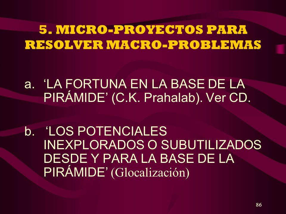 5. MICRO-PROYECTOS PARA RESOLVER MACRO-PROBLEMAS