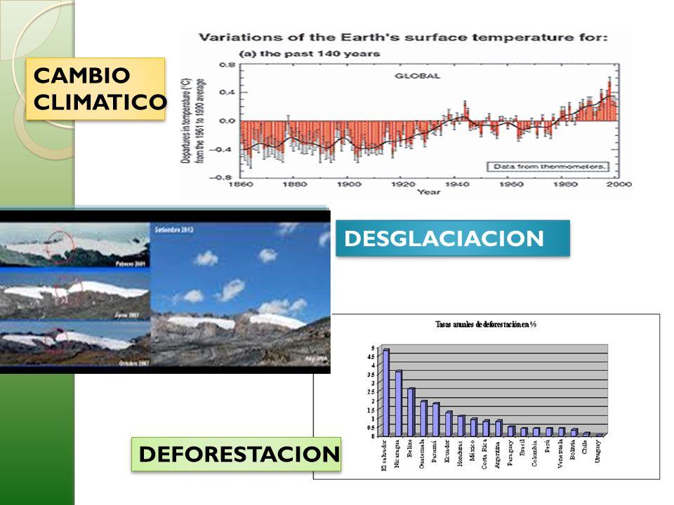 CAMBIO CLIMATICO DESGLACIACION DEFORESTACION