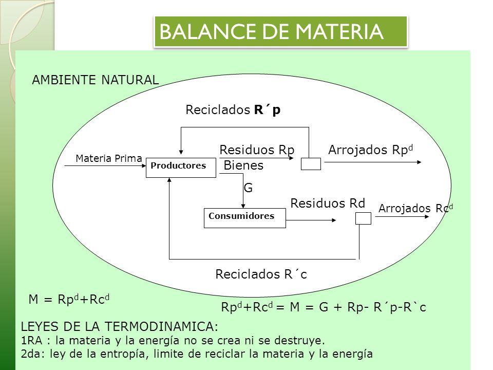 BALANCE DE MATERIA LEYES DE LA TERMODINAMICA: AMBIENTE NATURAL