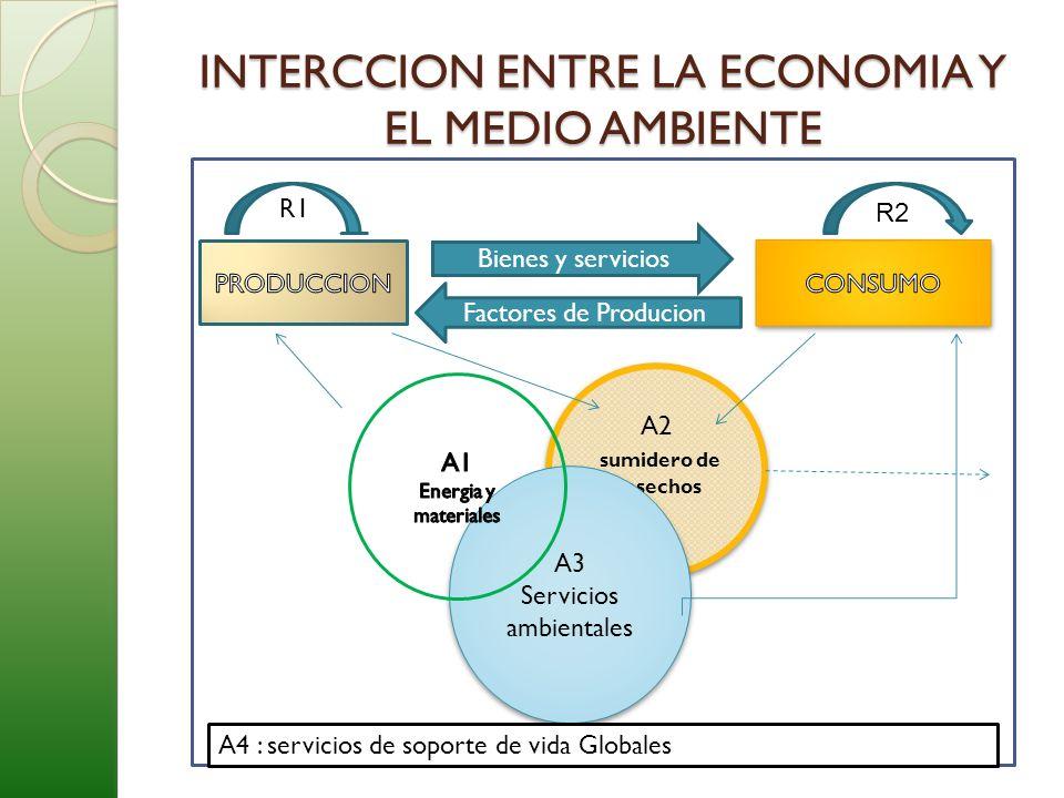 INTERCCION ENTRE LA ECONOMIA Y EL MEDIO AMBIENTE