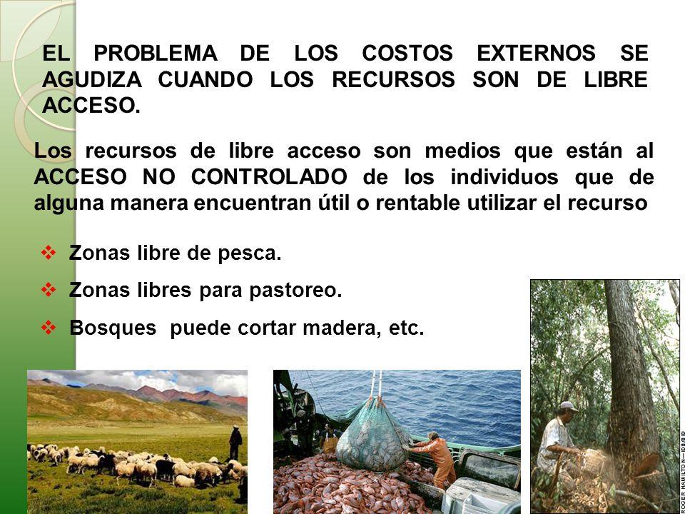 EL PROBLEMA DE LOS COSTOS EXTERNOS SE AGUDIZA CUANDO LOS RECURSOS SON DE LIBRE ACCESO.
