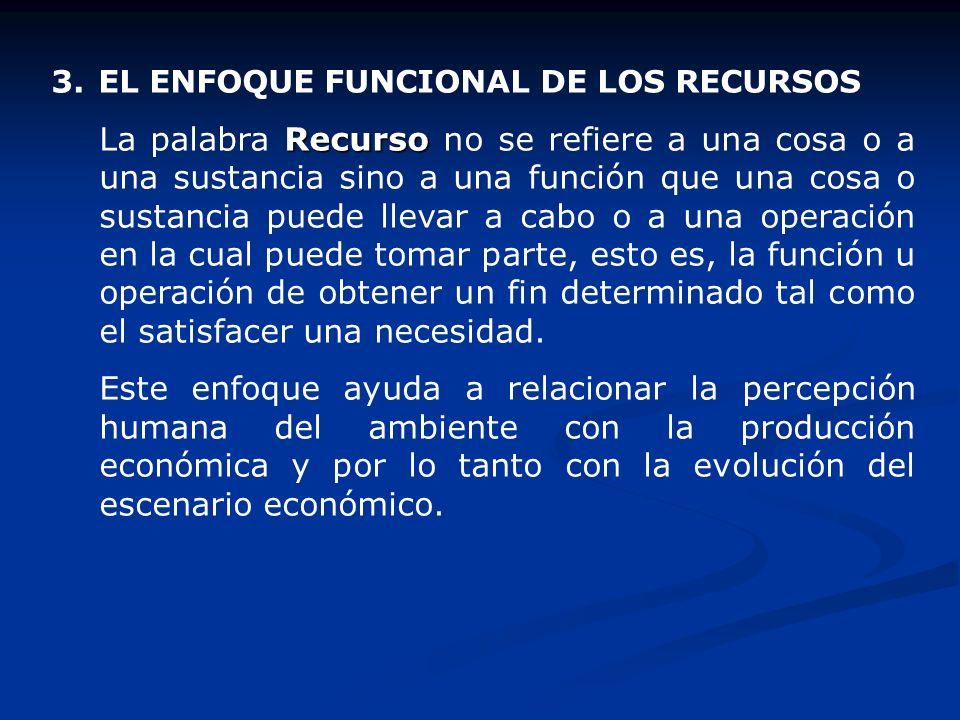 3. EL ENFOQUE FUNCIONAL DE LOS RECURSOS