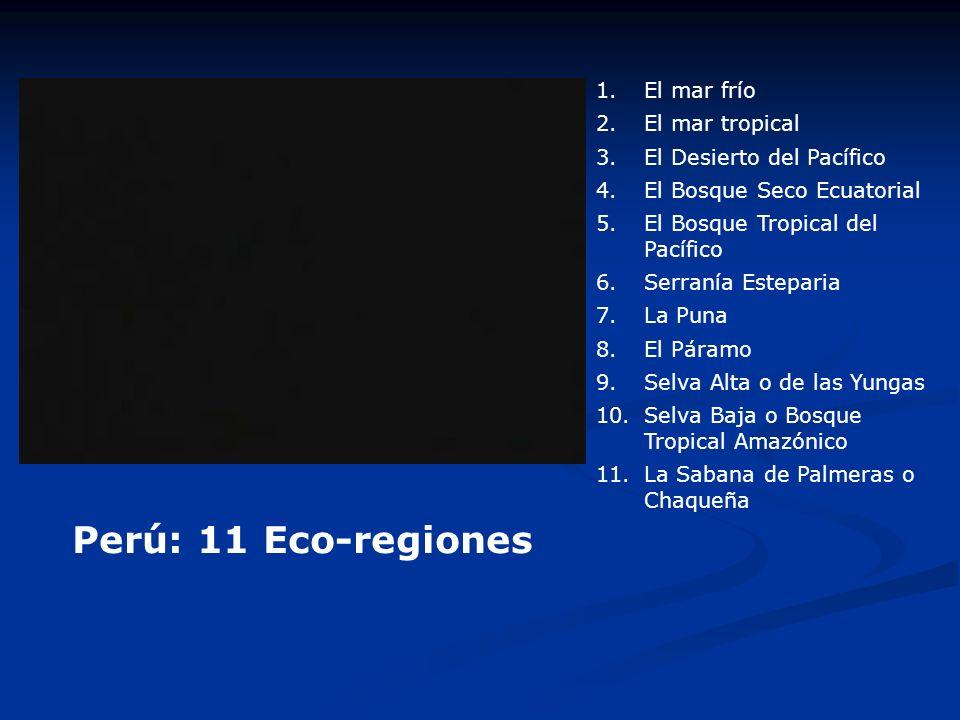 Perú: 11 Eco-regiones El mar frío El mar tropical