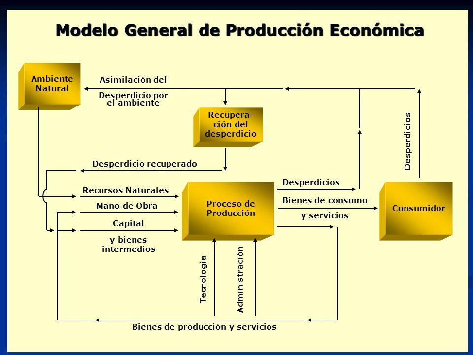 Modelo General de Producción Económica Desperdicio recuperado