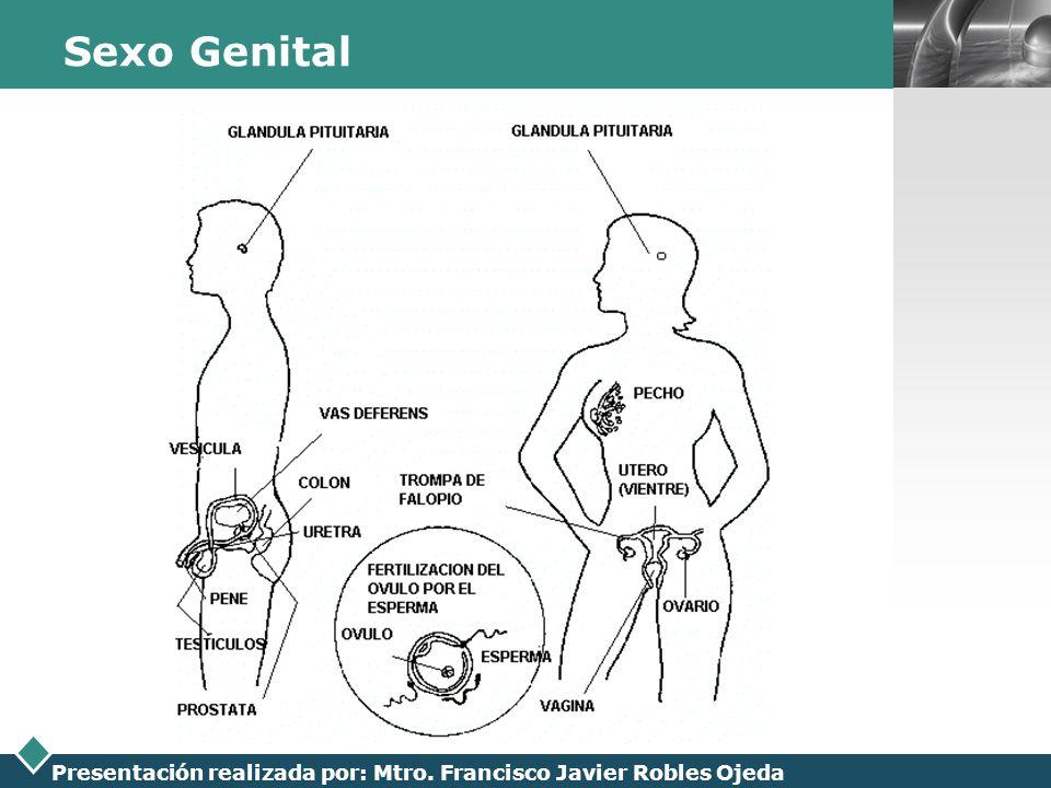 Sexo Genital