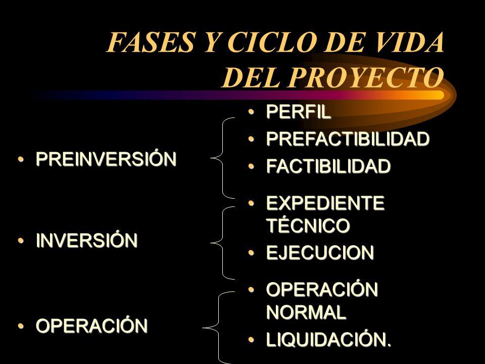 FASES Y CICLO DE VIDA DEL PROYECTO