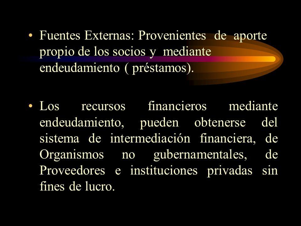 Fuentes Externas: Provenientes de aporte propio de los socios y mediante endeudamiento ( préstamos).