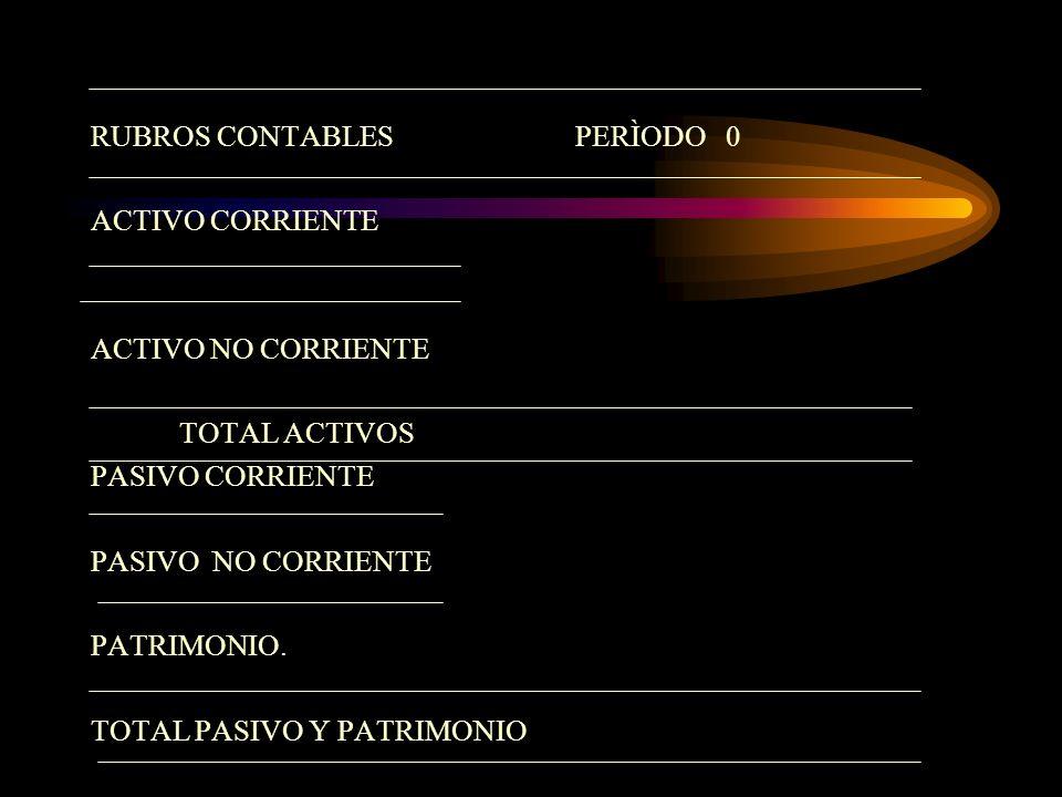 RUBROS CONTABLES PERÌODO 0
