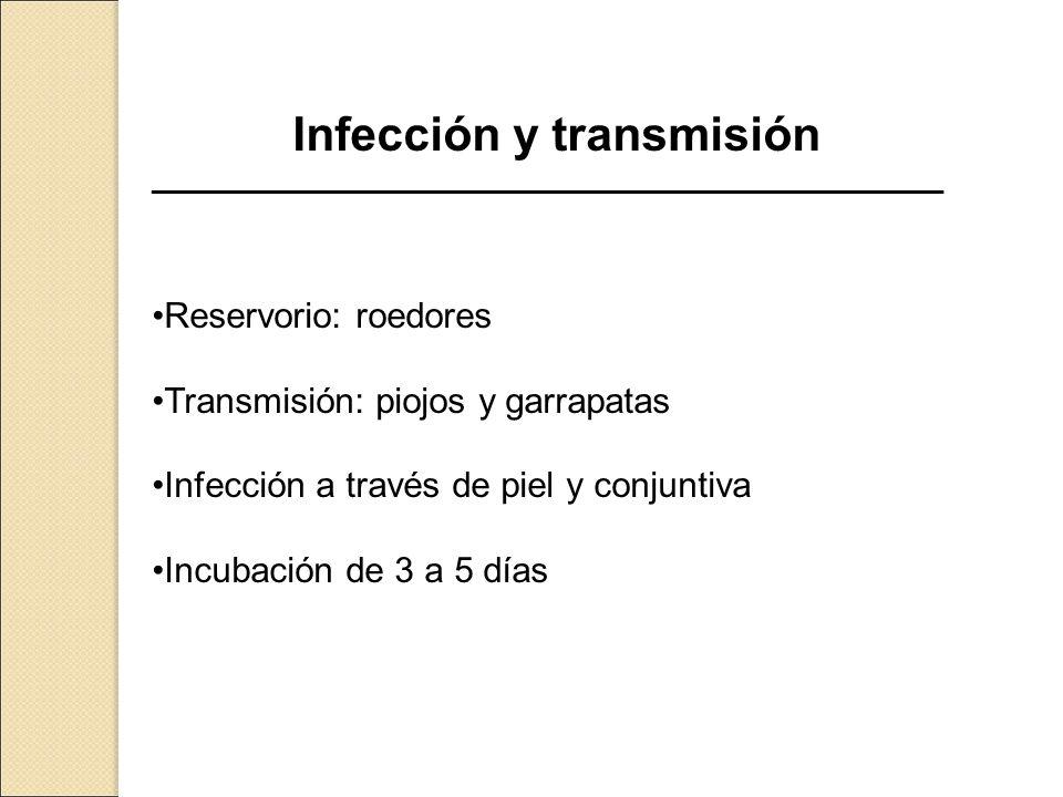Infección y transmisión