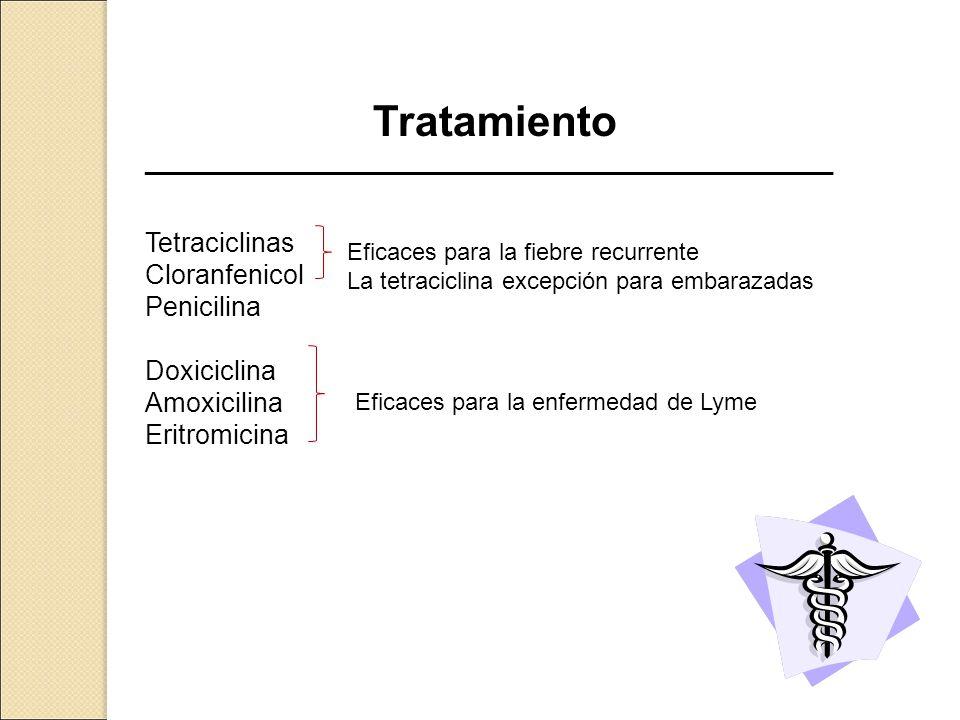 Tratamiento Tetraciclinas Cloranfenicol Penicilina Doxiciclina