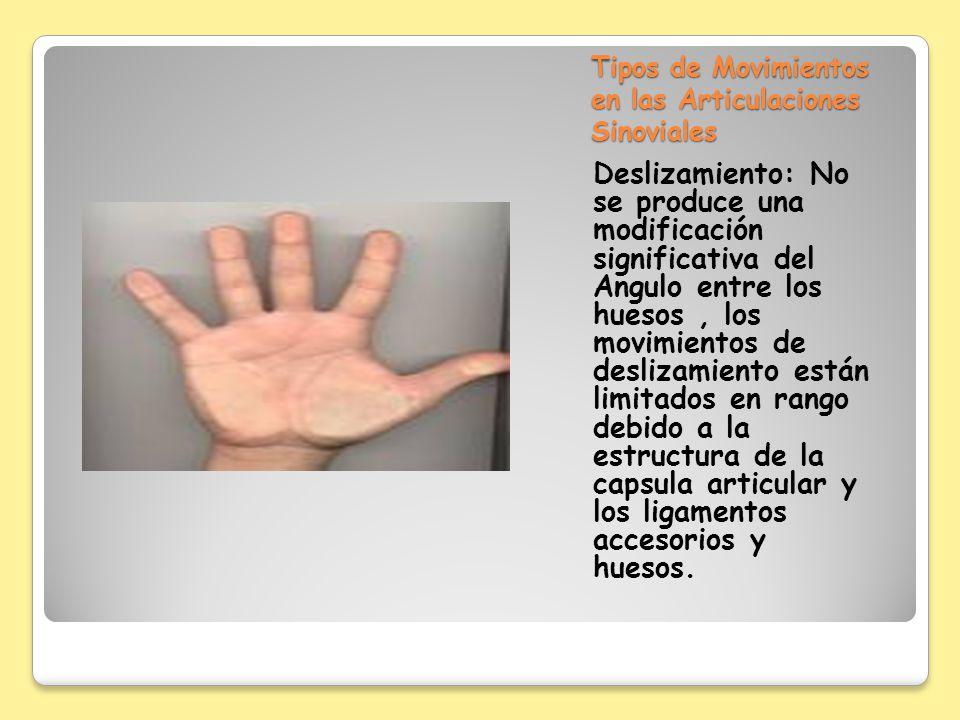 Tipos de Movimientos en las Articulaciones Sinoviales