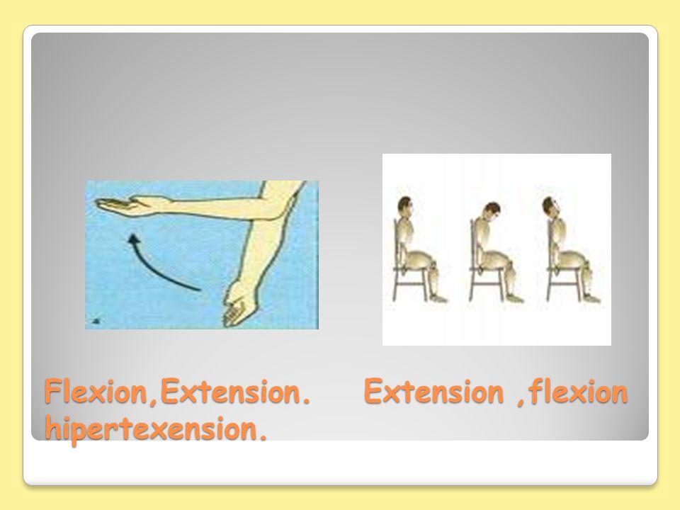 Flexion,Extension. Extension ,flexion hipertexension.