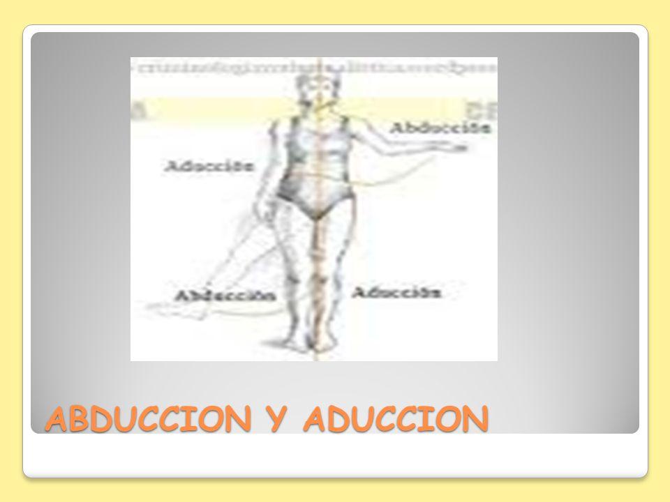 ABDUCCION Y ADUCCION