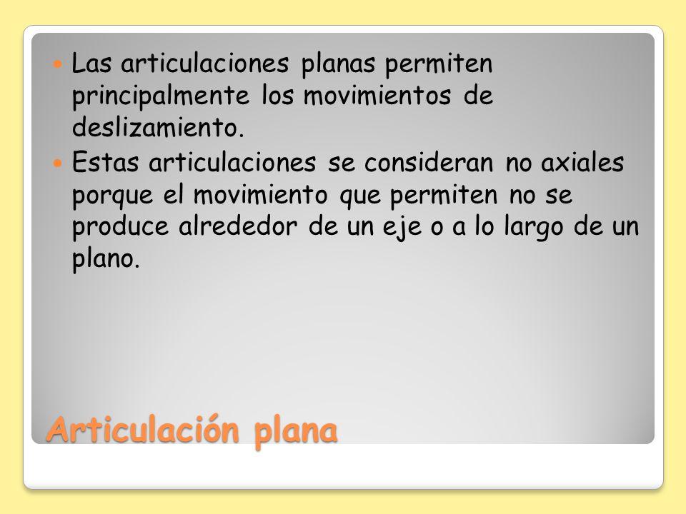 Las articulaciones planas permiten principalmente los movimientos de deslizamiento.