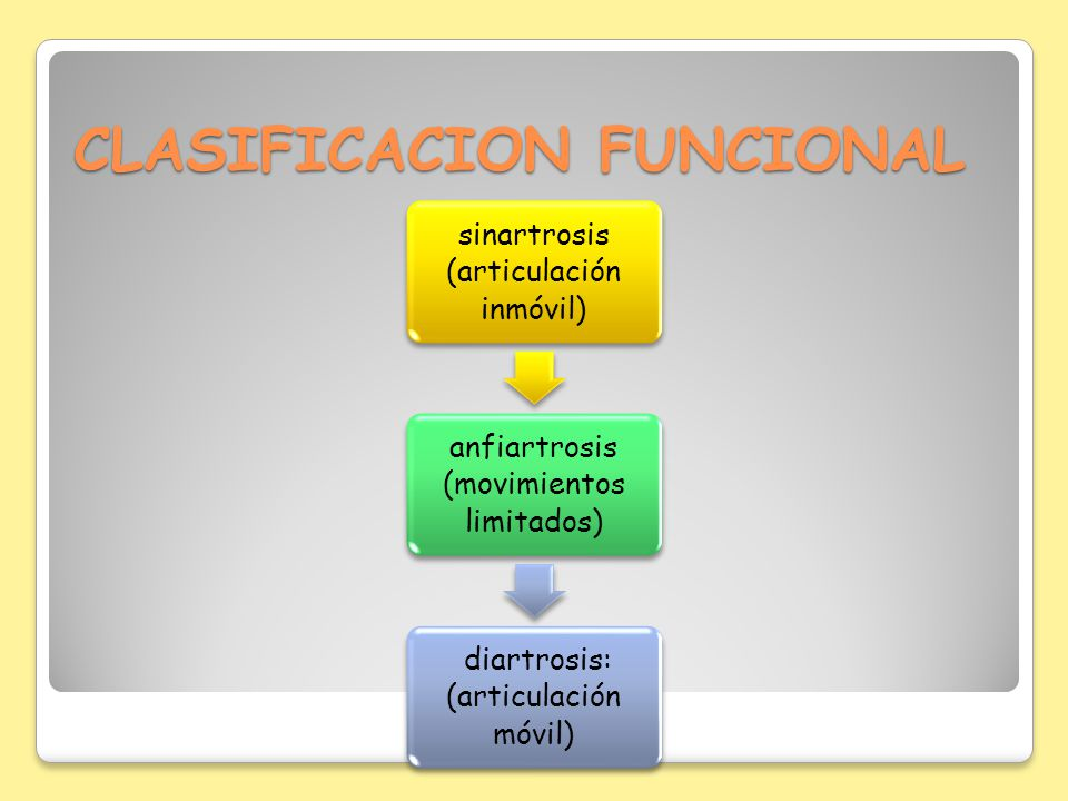 CLASIFICACION FUNCIONAL
