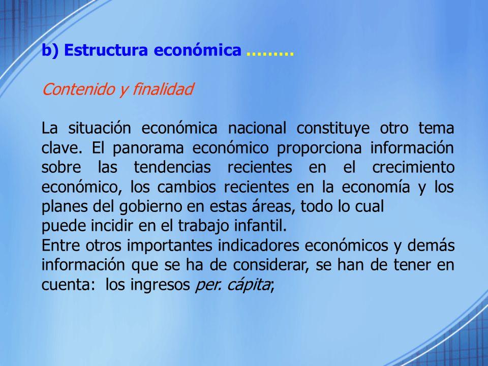 b) Estructura económica ………