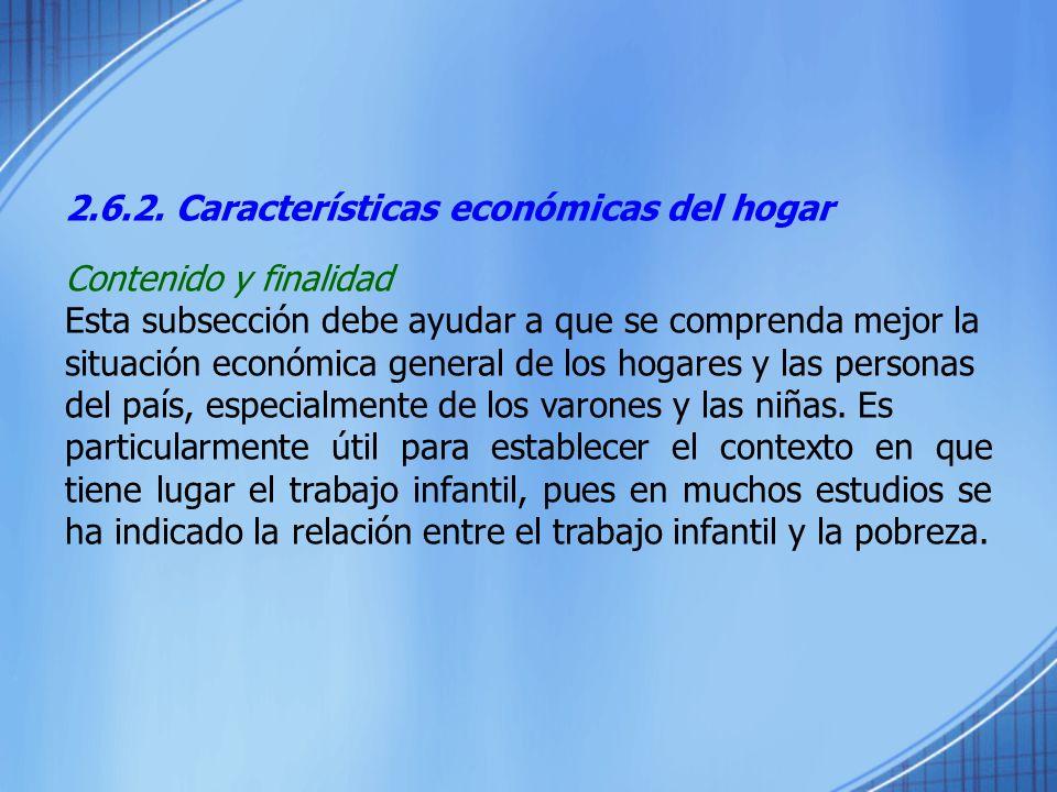 2.6.2. Características económicas del hogar