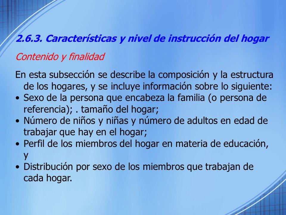 2.6.3. Características y nivel de instrucción del hogar