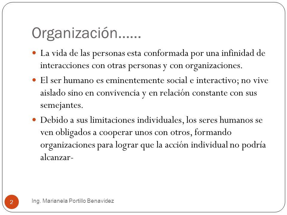 Organización…… La vida de las personas esta conformada por una infinidad de interacciones con otras personas y con organizaciones.