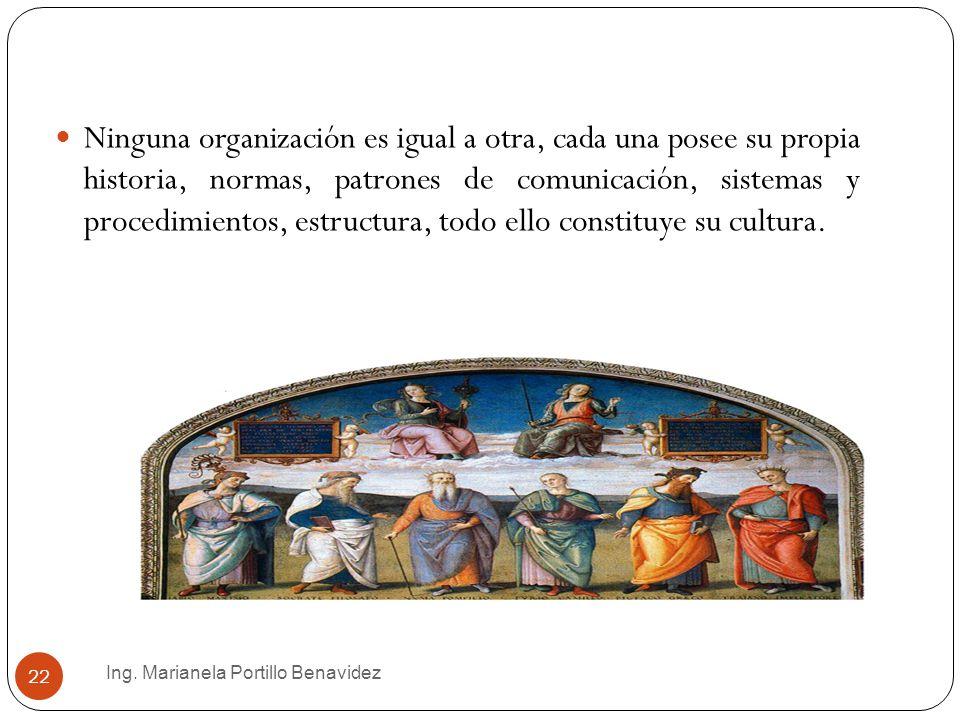 Ninguna organización es igual a otra, cada una posee su propia historia, normas, patrones de comunicación, sistemas y procedimientos, estructura, todo ello constituye su cultura.