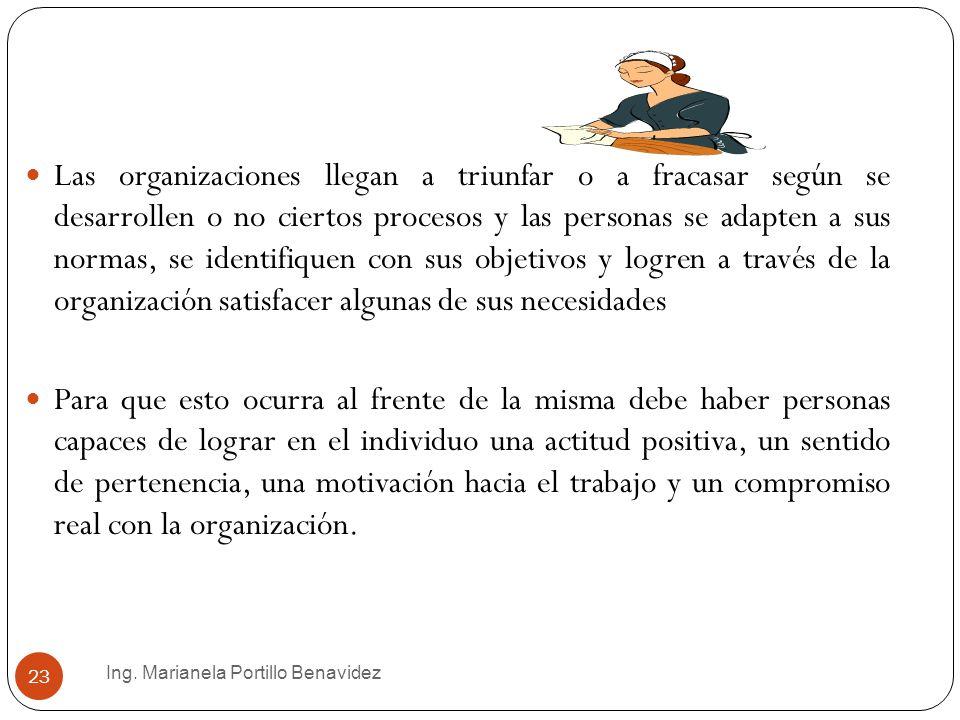 Las organizaciones llegan a triunfar o a fracasar según se desarrollen o no ciertos procesos y las personas se adapten a sus normas, se identifiquen con sus objetivos y logren a través de la organización satisfacer algunas de sus necesidades