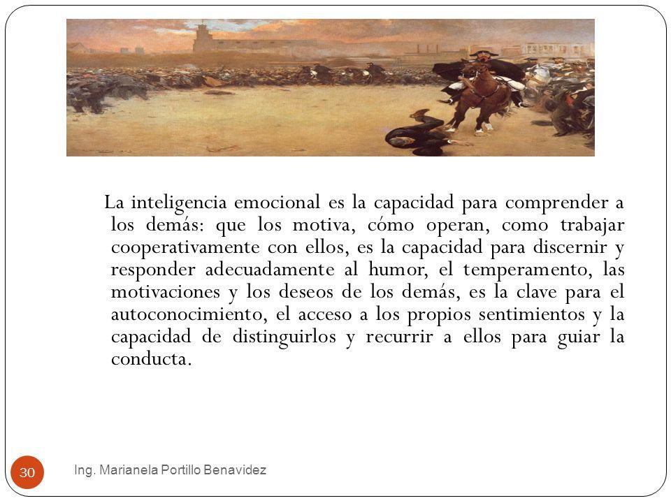 Ing. Marianela Portillo Benavidez