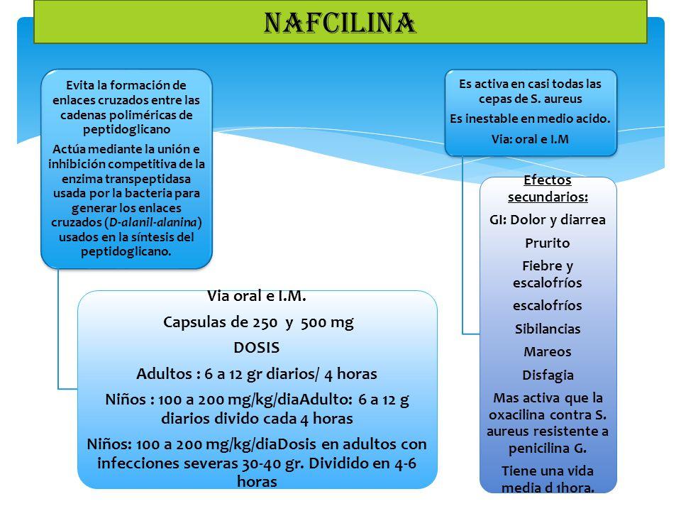 NAFCILINA Via oral e I.M. Capsulas de 250 y 500 mg DOSIS